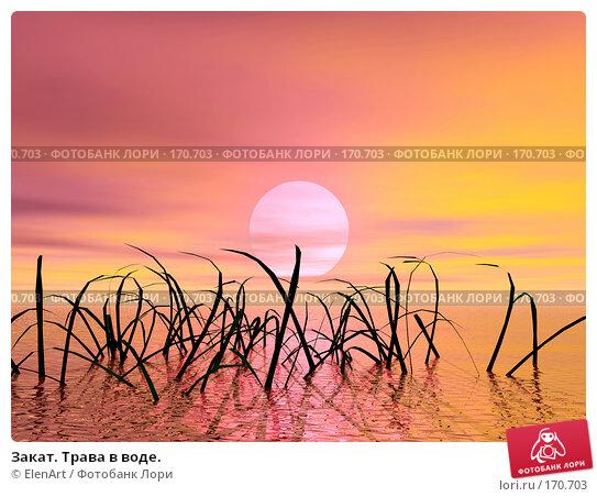 Закат. Трава в воде., иллюстрация № 170703 (c) ElenArt / Фотобанк Лори