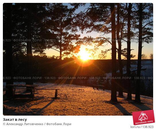 Закат в лесу, фото № 138923, снято 25 ноября 2007 г. (c) Александр Литовченко / Фотобанк Лори