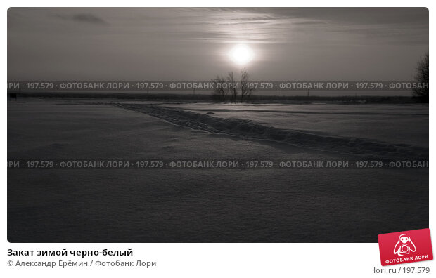 Закат зимой черно-белый, фото № 197579, снято 19 января 2008 г. (c) Александр Ерёмин / Фотобанк Лори
