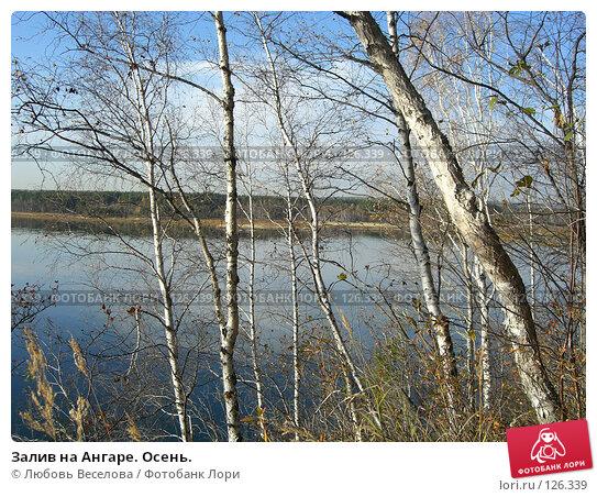 Залив на Ангаре. Осень., фото № 126339, снято 1 октября 2007 г. (c) Любовь Веселова / Фотобанк Лори