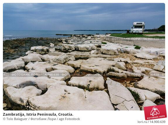 Купить «Zambratija, Istria Peninsula, Croatia.», фото № 14900639, снято 19 июня 2018 г. (c) age Fotostock / Фотобанк Лори