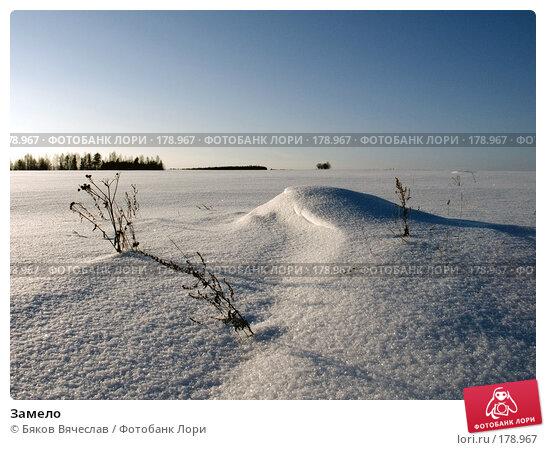 Замело, фото № 178967, снято 4 января 2008 г. (c) Бяков Вячеслав / Фотобанк Лори
