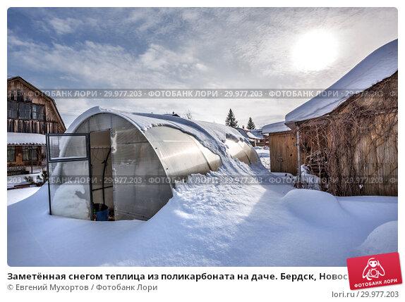 Купить «Заметённая снегом теплица из поликарбоната на даче. Бердск, Новосибирская область, Западная Сибирь, Россия», фото № 29977203, снято 16 февраля 2019 г. (c) Евгений Мухортов / Фотобанк Лори