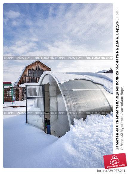 Купить «Заметённая снегом теплица из поликарбоната на даче. Бердск, Новосибирская область, Западная Сибирь, Россия», фото № 29977211, снято 16 февраля 2019 г. (c) Евгений Мухортов / Фотобанк Лори