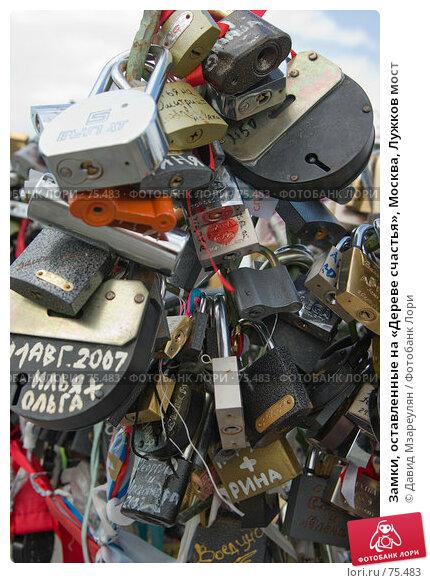 Замки, оставленные на «Дереве счастья», Москва, Лужков мост, фото № 75483, снято 22 августа 2007 г. (c) Давид Мзареулян / Фотобанк Лори