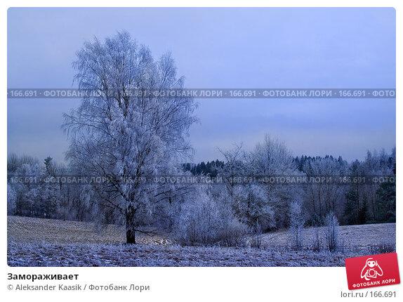 Замораживает, фото № 166691, снято 10 декабря 2016 г. (c) Aleksander Kaasik / Фотобанк Лори