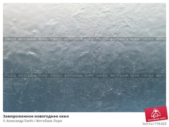 Замороженное новогоднее окно, фото № 119023, снято 11 февраля 2007 г. (c) Александр Fanfo / Фотобанк Лори