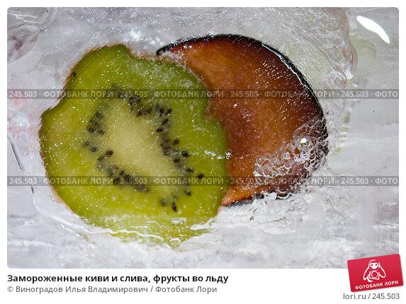 Замороженные киви и слива, фрукты во льду, фото № 245503, снято 7 декабря 2007 г. (c) Виноградов Илья Владимирович / Фотобанк Лори