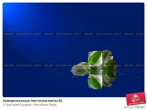 Купить «Замороженные листочки мяты 02», фото № 196807, снято 24 апреля 2018 г. (c) Григорий Сухарев / Фотобанк Лори