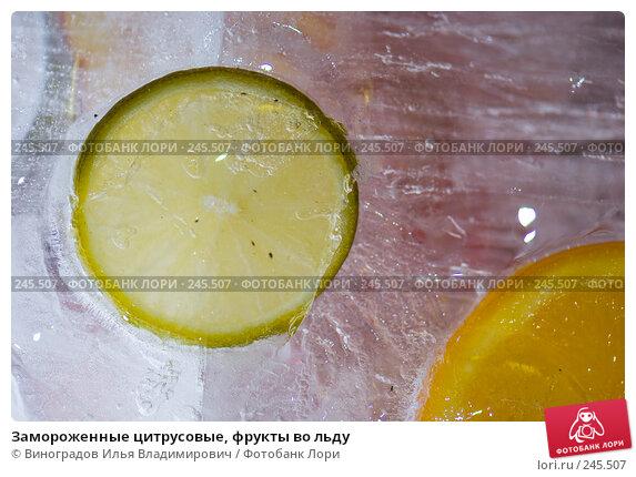 Замороженные цитрусовые, фрукты во льду, фото № 245507, снято 7 декабря 2007 г. (c) Виноградов Илья Владимирович / Фотобанк Лори