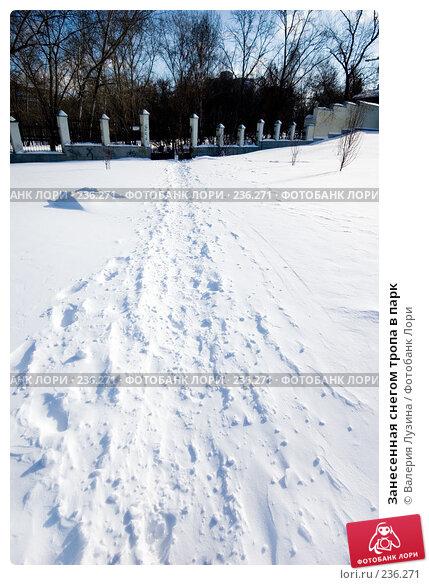 Занесенная снегом тропа в парк, фото № 236271, снято 22 февраля 2008 г. (c) Валерия Потапова / Фотобанк Лори