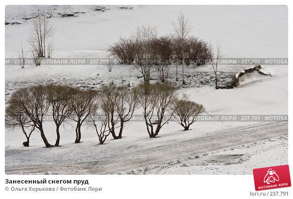 Занесенный снегом пруд, фото № 237791, снято 26 марта 2008 г. (c) Ольга Хорькова / Фотобанк Лори