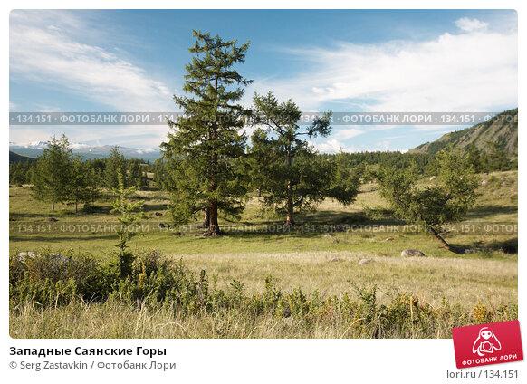 Западные Саянские Горы, фото № 134151, снято 27 июня 2006 г. (c) Serg Zastavkin / Фотобанк Лори