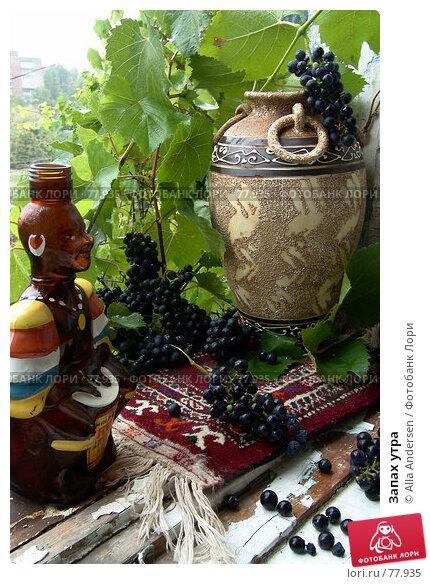 Купить «Запах утра», фото № 77935, снято 2 сентября 2006 г. (c) Alla Andersen / Фотобанк Лори