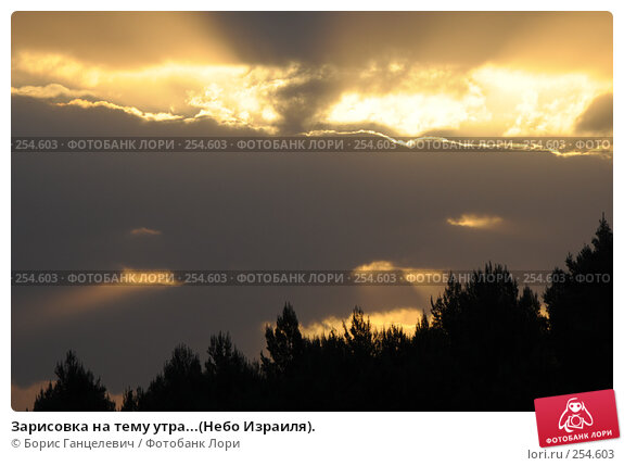 Зарисовка на тему утра...(Небо Израиля)., фото № 254603, снято 17 апреля 2008 г. (c) Борис Ганцелевич / Фотобанк Лори