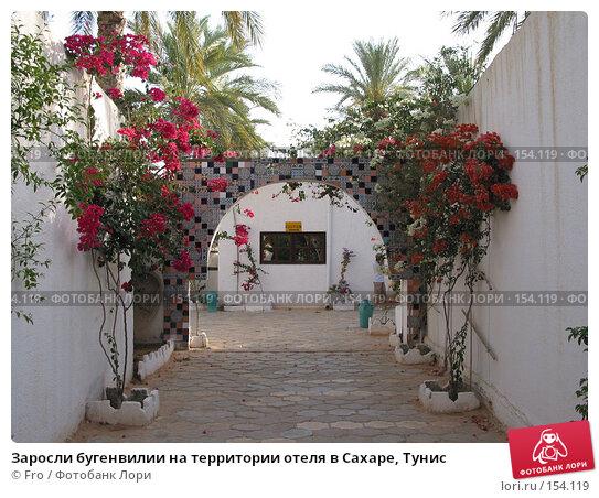 Заросли бугенвилии на территории отеля в Сахаре, Тунис, фото № 154119, снято 22 июня 2004 г. (c) Fro / Фотобанк Лори