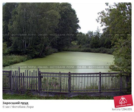 Купить «Заросший пруд», фото № 294055, снято 5 августа 2007 г. (c) sav / Фотобанк Лори