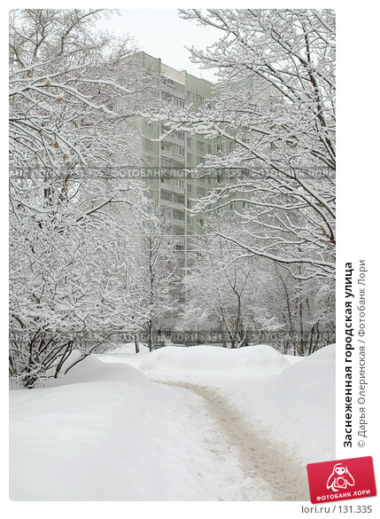 Купить «Заснеженная городская улица», фото № 131335, снято 24 февраля 2006 г. (c) Дарья Олеринская / Фотобанк Лори