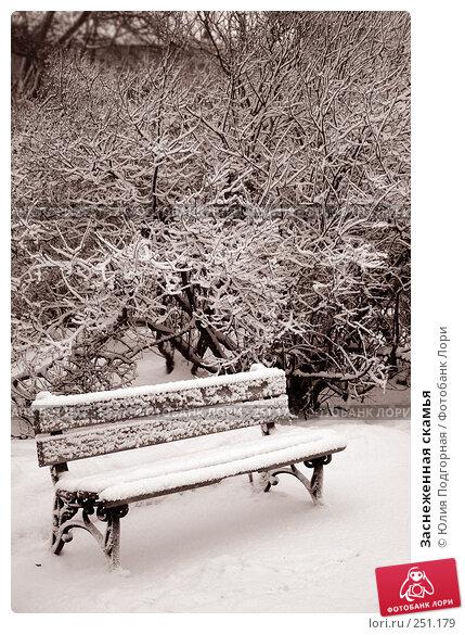 Купить «Заснеженная скамья», фото № 251179, снято 27 января 2006 г. (c) Юлия Селезнева / Фотобанк Лори