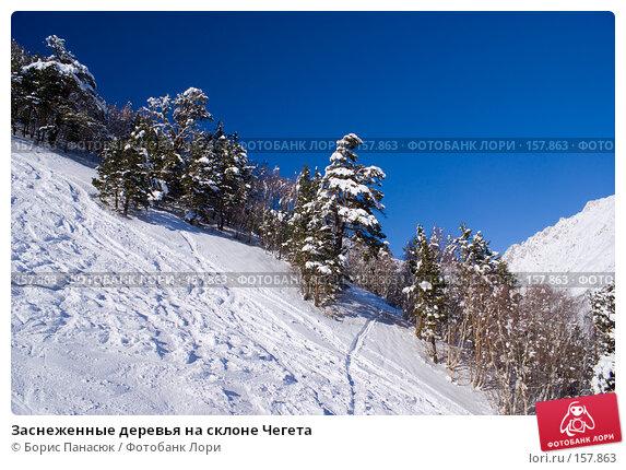 Заснеженные деревья на склоне Чегета, фото № 157863, снято 15 декабря 2007 г. (c) Борис Панасюк / Фотобанк Лори