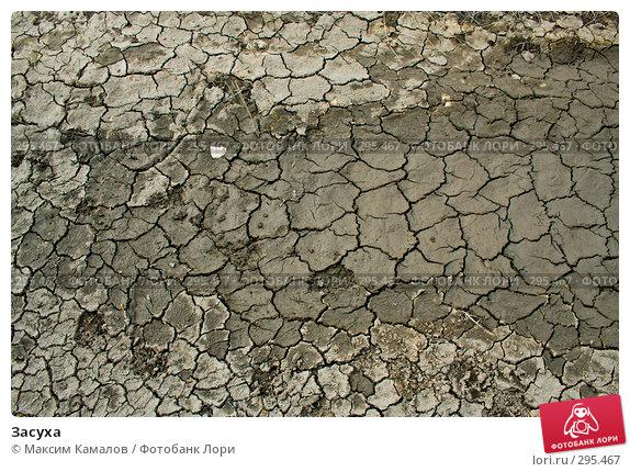 Засуха, фото № 295467, снято 3 апреля 2008 г. (c) Максим Камалов / Фотобанк Лори