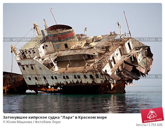 """Затонувшее кипрское судна """"Лара"""" в Красном море (2010 год). Стоковое фото, фотограф Юлия Машкова / Фотобанк Лори"""