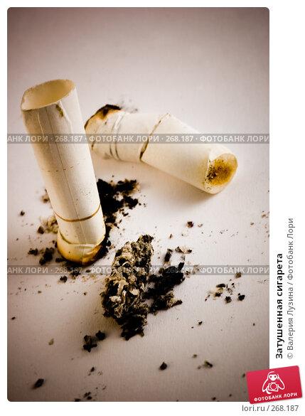 Купить «Затушенная сигарета», фото № 268187, снято 17 сентября 2007 г. (c) Валерия Потапова / Фотобанк Лори