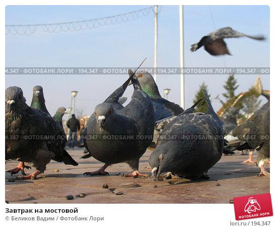 Завтрак на мостовой, фото № 194347, снято 20 октября 2007 г. (c) Беликов Вадим / Фотобанк Лори