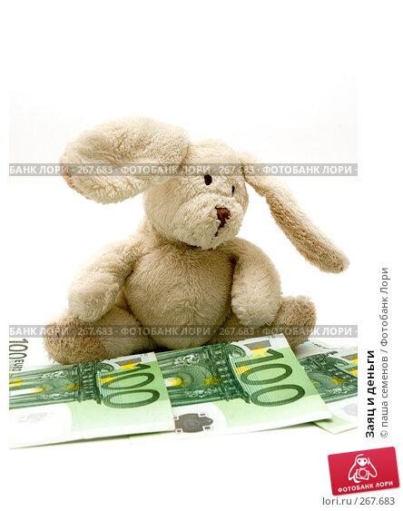 Заяц и деньги, фото № 267683, снято 25 марта 2008 г. (c) паша семенов / Фотобанк Лори
