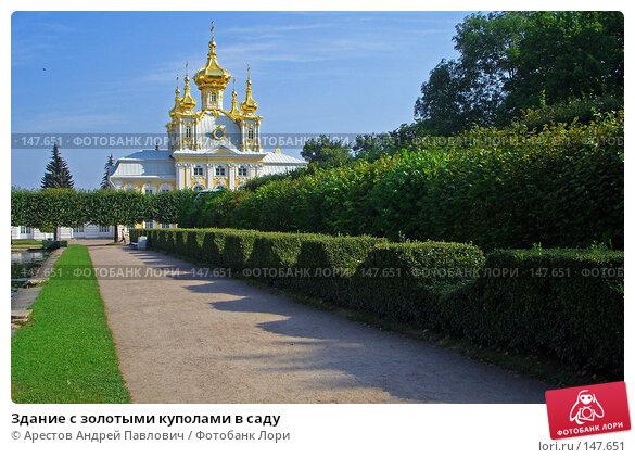 Здание с золотыми куполами в саду, фото № 147651, снято 15 августа 2007 г. (c) Арестов Андрей Павлович / Фотобанк Лори
