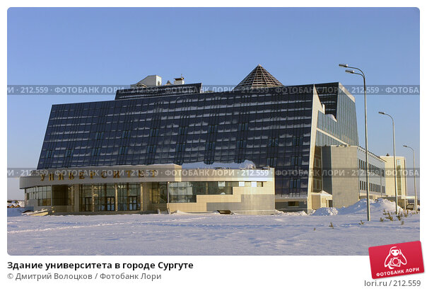 Здание университета в городе Сургуте, фото № 212559, снято 2 марта 2008 г. (c) Дмитрий Волоцков / Фотобанк Лори