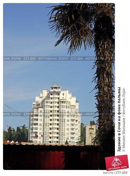 Здание в Сочи на фоне пальмы, фото № 277459, снято 2 мая 2008 г. (c) Михаил Малышев / Фотобанк Лори