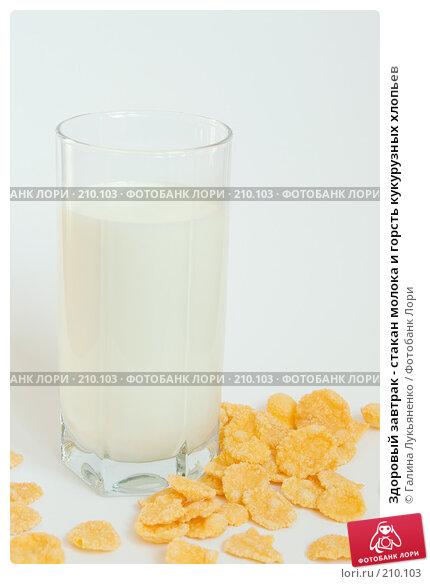 Здоровый завтрак - стакан молока и горсть кукурузных хлопьев, фото № 210103, снято 27 февраля 2008 г. (c) Галина Лукьяненко / Фотобанк Лори