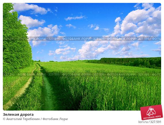 Зеленая дорога, фото № 327591, снято 31 мая 2008 г. (c) Анатолий Теребенин / Фотобанк Лори
