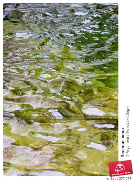 Купить «Зеленая вода», фото № 277275, снято 28 апреля 2008 г. (c) Argument / Фотобанк Лори