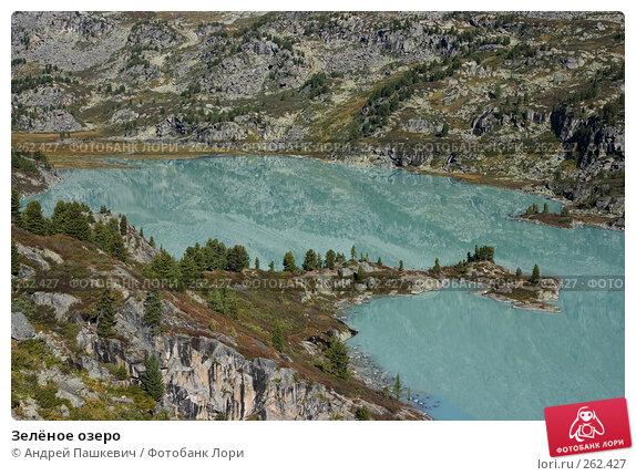 Зелёное озеро, фото № 262427, снято 22 октября 2016 г. (c) Андрей Пашкевич / Фотобанк Лори