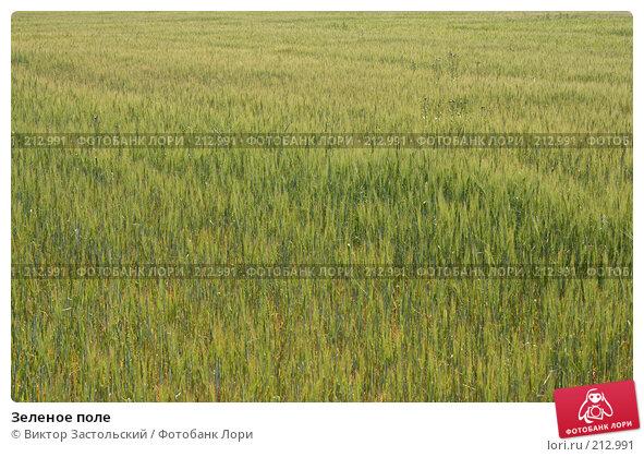 Зеленое поле, фото № 212991, снято 28 июля 2007 г. (c) Виктор Застольский / Фотобанк Лори