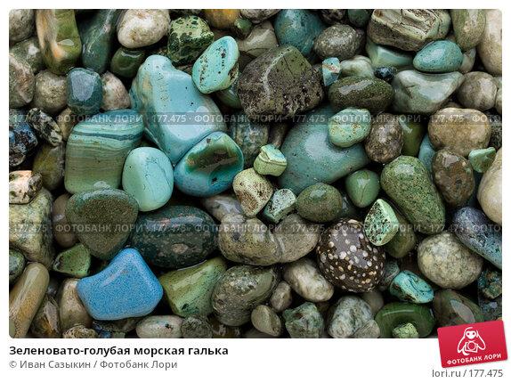 Зеленовато-голубая морская галька, фото № 177475, снято 9 ноября 2007 г. (c) Иван Сазыкин / Фотобанк Лори