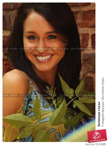 Купить «Зеленые глаза», фото № 313895, снято 5 июня 2008 г. (c) Андрей Аркуша / Фотобанк Лори