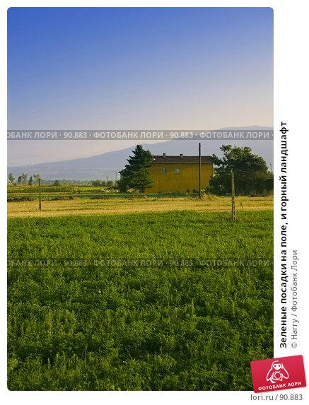 Зеленые посадки на поле, и горный ландшафт, фото № 90883, снято 17 августа 2007 г. (c) Harry / Фотобанк Лори