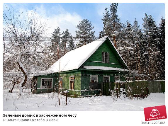 Зеленый домик в заснеженном лесу, эксклюзивное фото № 222863, снято 16 февраля 2008 г. (c) Ольга Визави / Фотобанк Лори