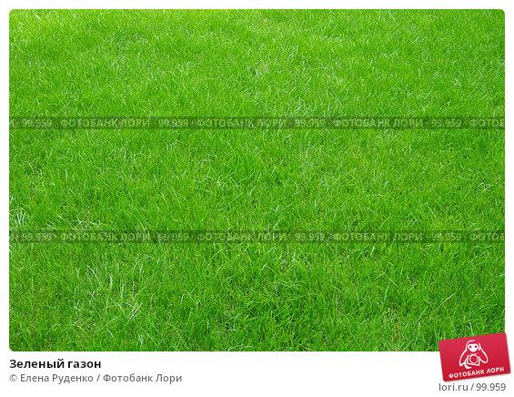 Зеленый газон, фото № 99959, снято 23 сентября 2007 г. (c) Елена Руденко / Фотобанк Лори