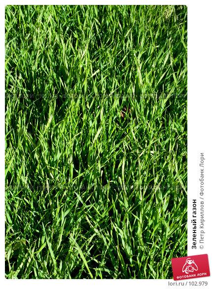 Зеленый газон, фото № 102979, снято 29 марта 2017 г. (c) Петр Кириллов / Фотобанк Лори