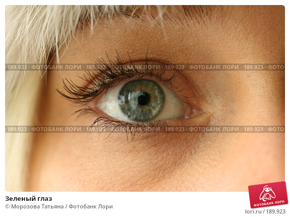 Зеленый глаз, фото № 189923, снято 18 октября 2006 г. (c) Морозова Татьяна / Фотобанк Лори