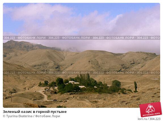 Зеленый оазис в горной пустыне, фото № 304223, снято 21 сентября 2007 г. (c) Tyurina Ekaterina / Фотобанк Лори