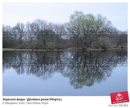 Зеркало воды  (Долина реки Уборть), фото № 255883, снято 9 апреля 2008 г. (c) Мещенко Олег / Фотобанк Лори