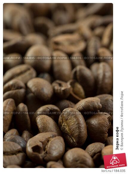 Зерна кофе, фото № 184035, снято 12 сентября 2007 г. (c) Валерия Потапова / Фотобанк Лори