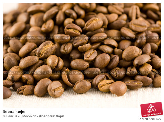 Купить «Зерна кофе», фото № 201627, снято 24 марта 2007 г. (c) Валентин Мосичев / Фотобанк Лори