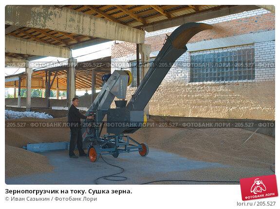 Зернопогрузчик на току. Сушка зерна., фото № 205527, снято 6 сентября 2004 г. (c) Иван Сазыкин / Фотобанк Лори