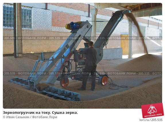 Зернопогрузчик на току. Сушка зерна., фото № 205535, снято 6 сентября 2004 г. (c) Иван Сазыкин / Фотобанк Лори
